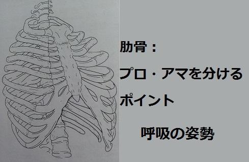 肋骨プロアマ呼吸